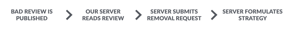 Bad Review AI Software Process, published, read, removal request, Review Remedy